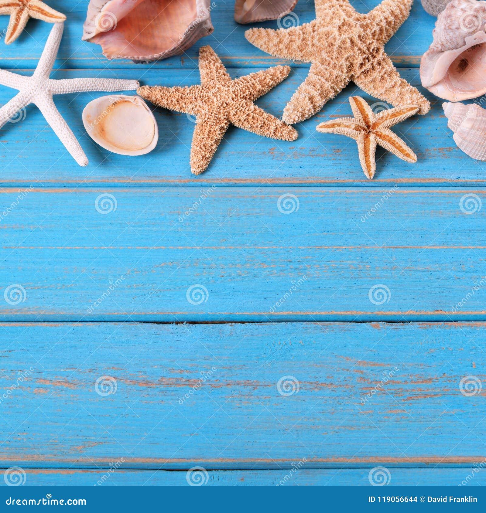 cdd34d1ec Tropical Beach Summer Starfish Background Seashore Border Stock ...