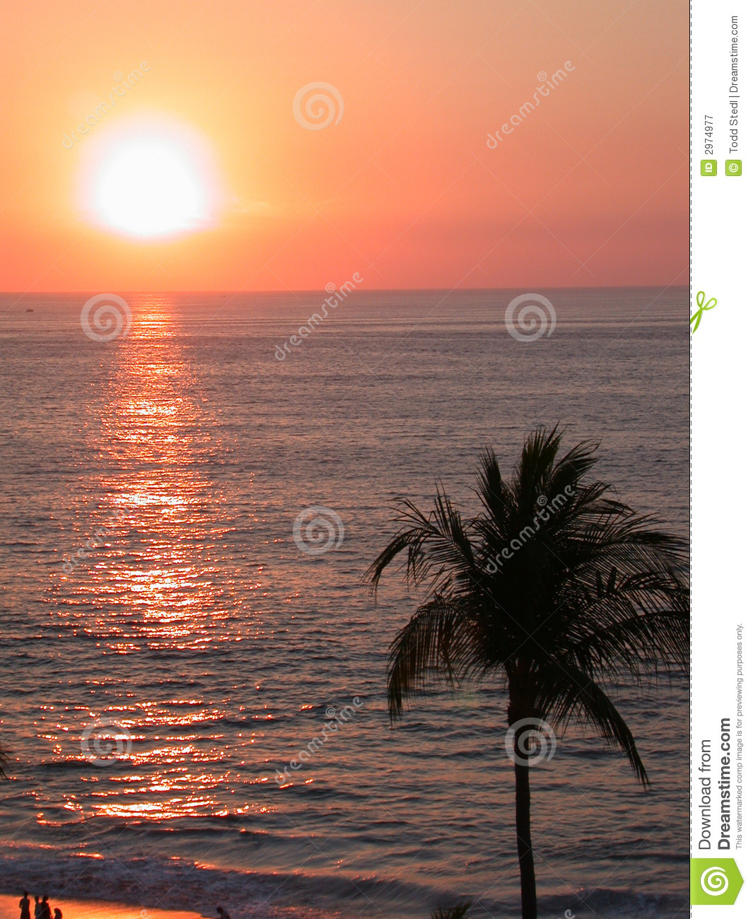 Tropical Beach Sunset Stock Image. Image Of Water, Palm