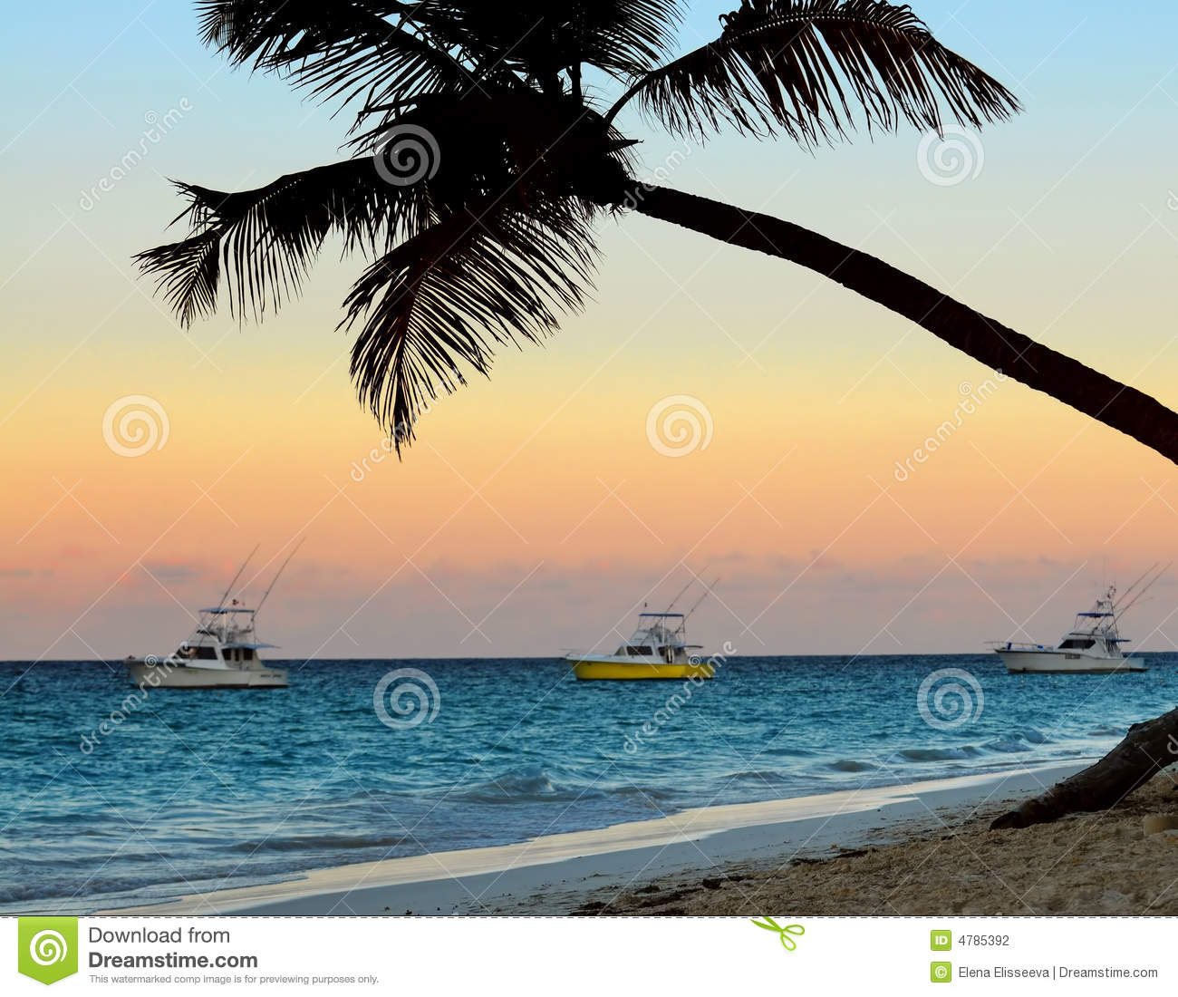 Tropical Beach At Sunset Stock Photo. Image Of Background