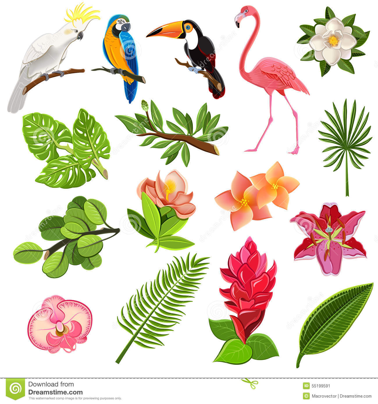 Exotic tropical leaves and parrots pictograms collection with orchids ...