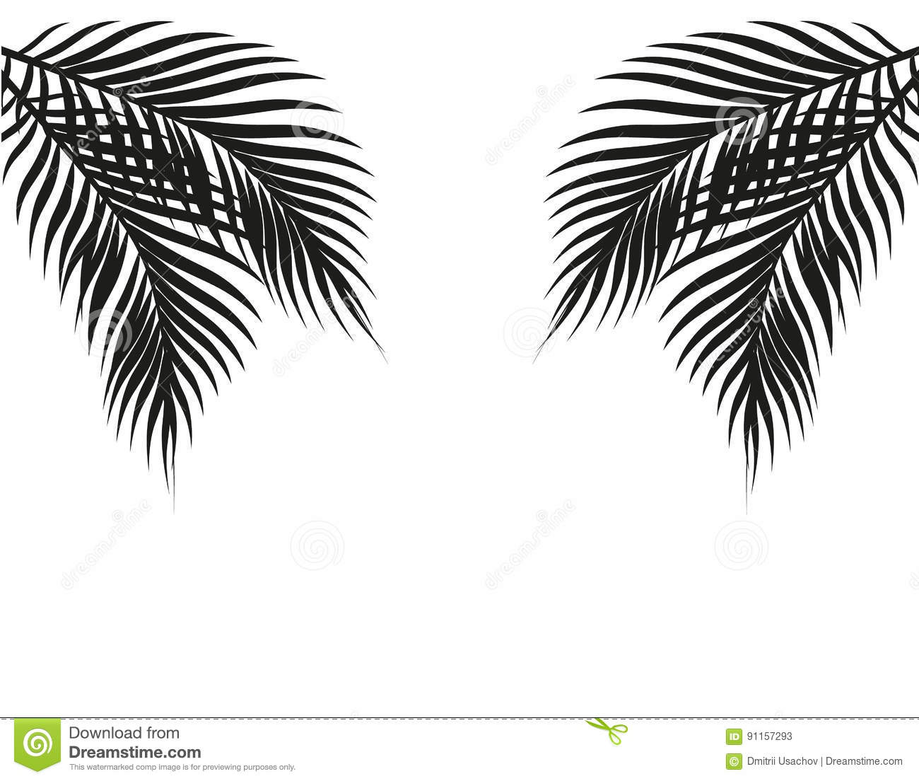 Tropical black and white palm leaves on both sides symmetrical isolated on white background