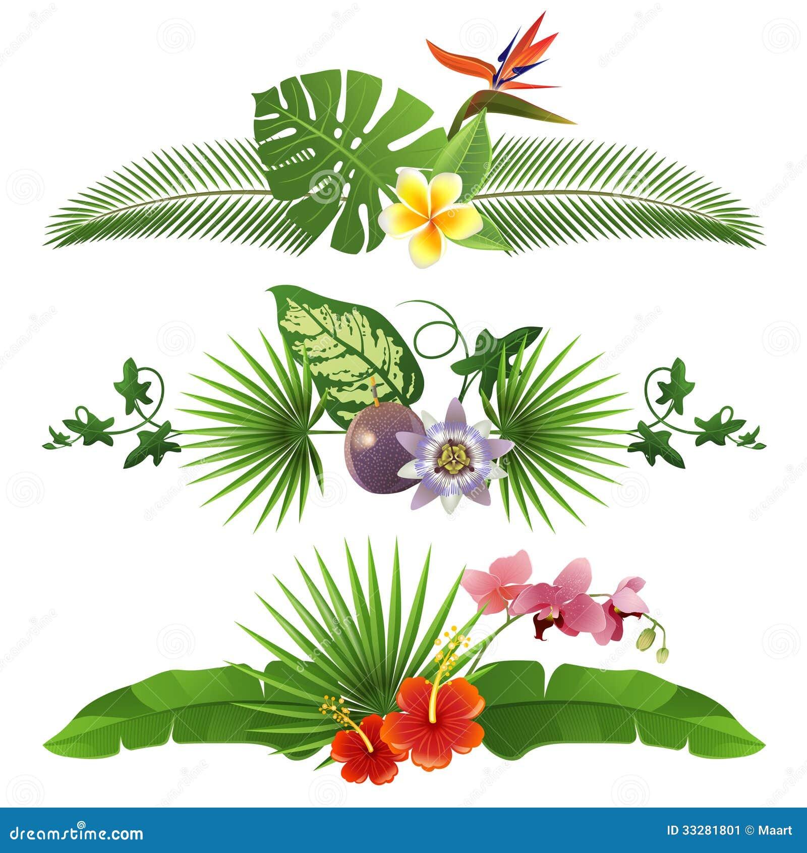 Tropical Borders Stock Image - Image: 33281801