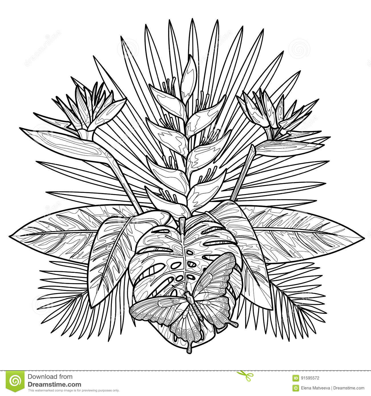 Tropical Bouquet Coloring Page Stock Vector - Illustration of ...