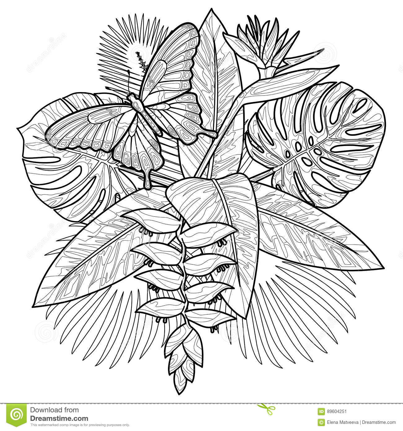 Tropical Bouquet Cororing Page Stock Vector Illustration Of Exotic