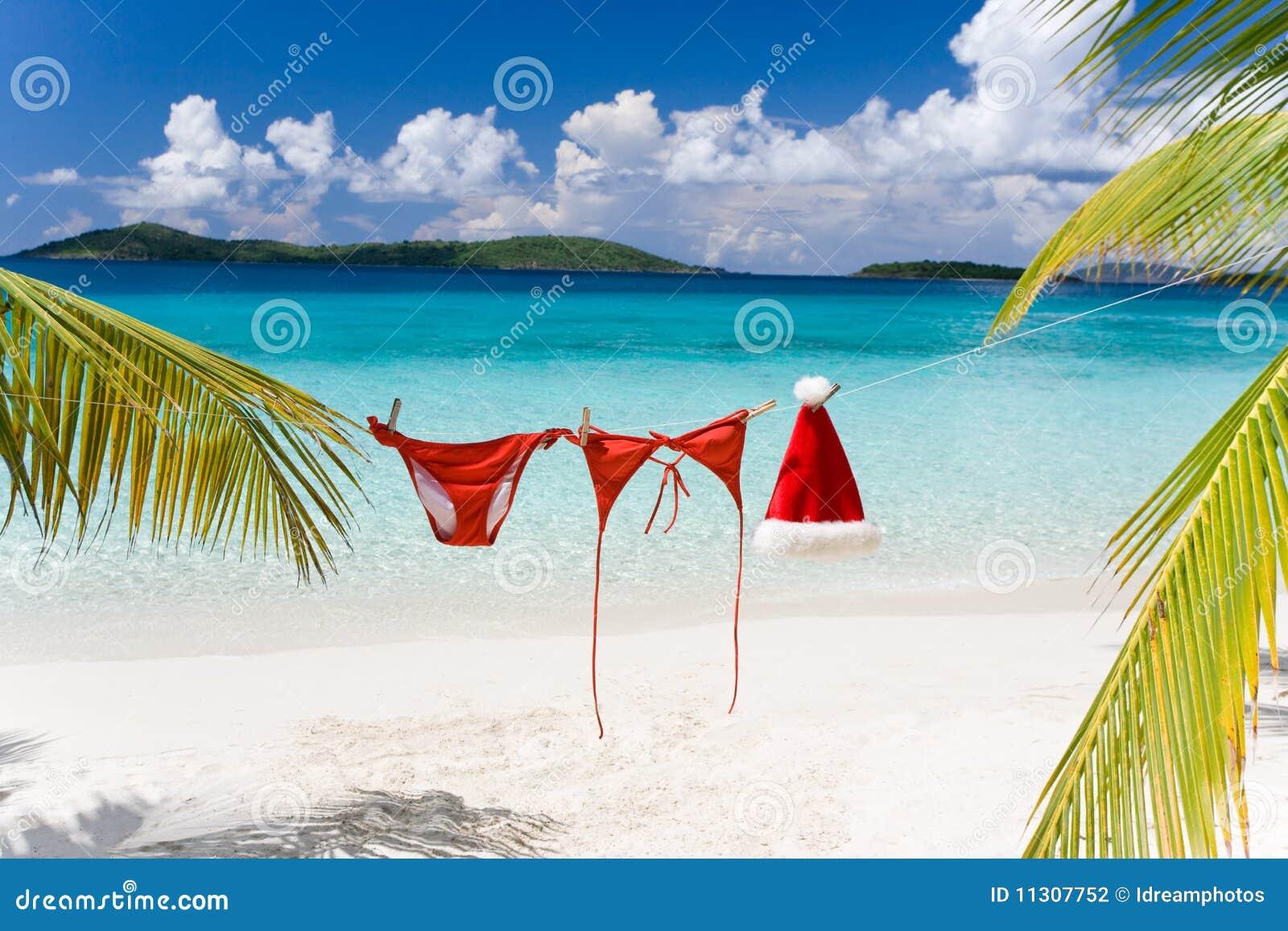 Tropical Christmas.Tropical Christmas Beach Stock Photo Image Of Holiday