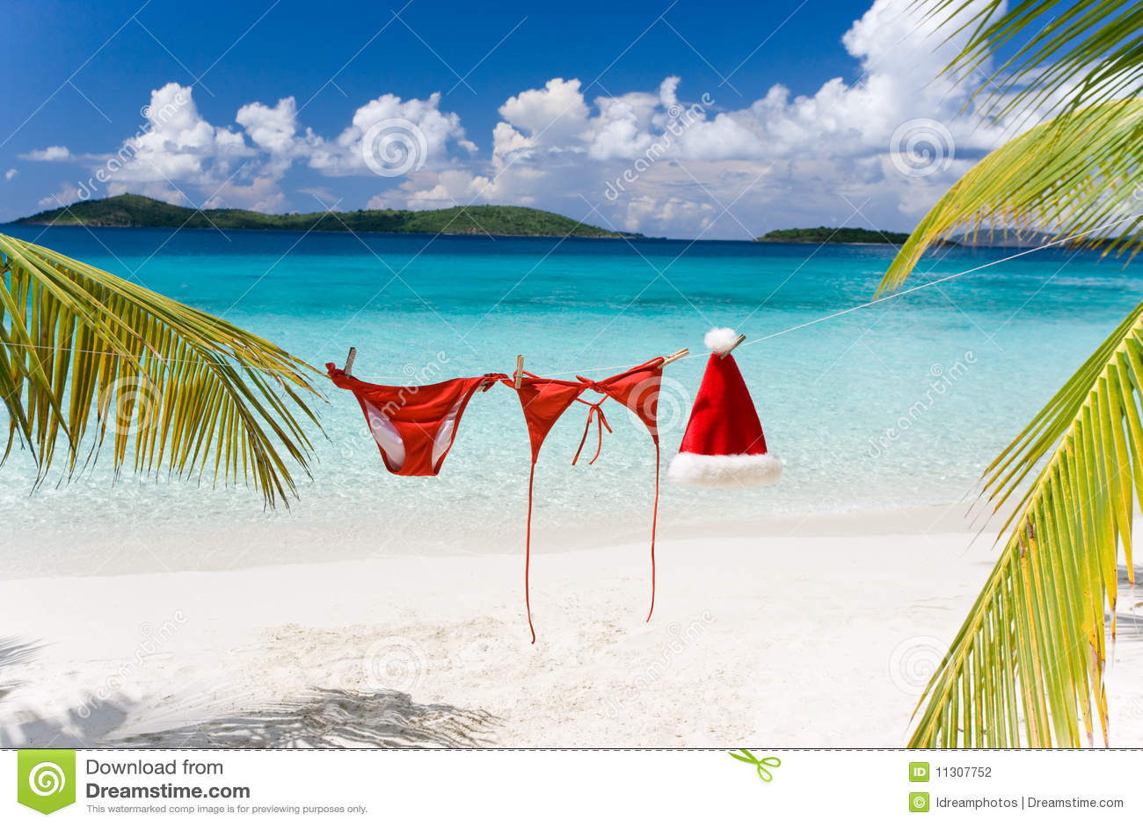 Christmas Beach.Tropical Christmas Beach Stock Photo Image Of Holiday