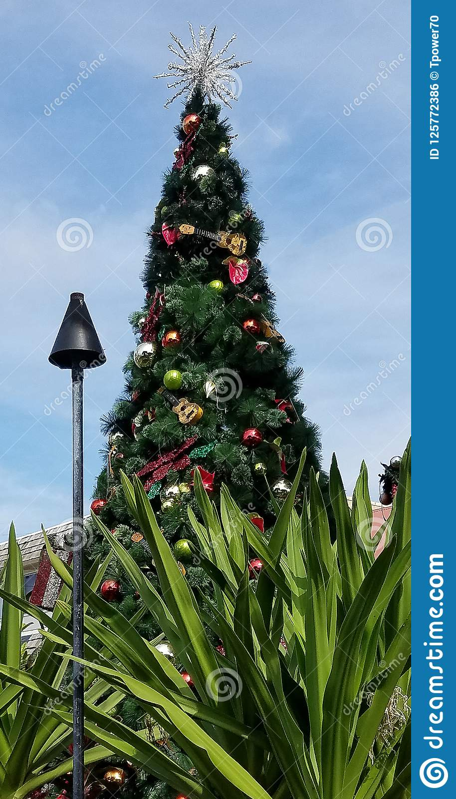 tropical christmas tree and decorations stock photo image of