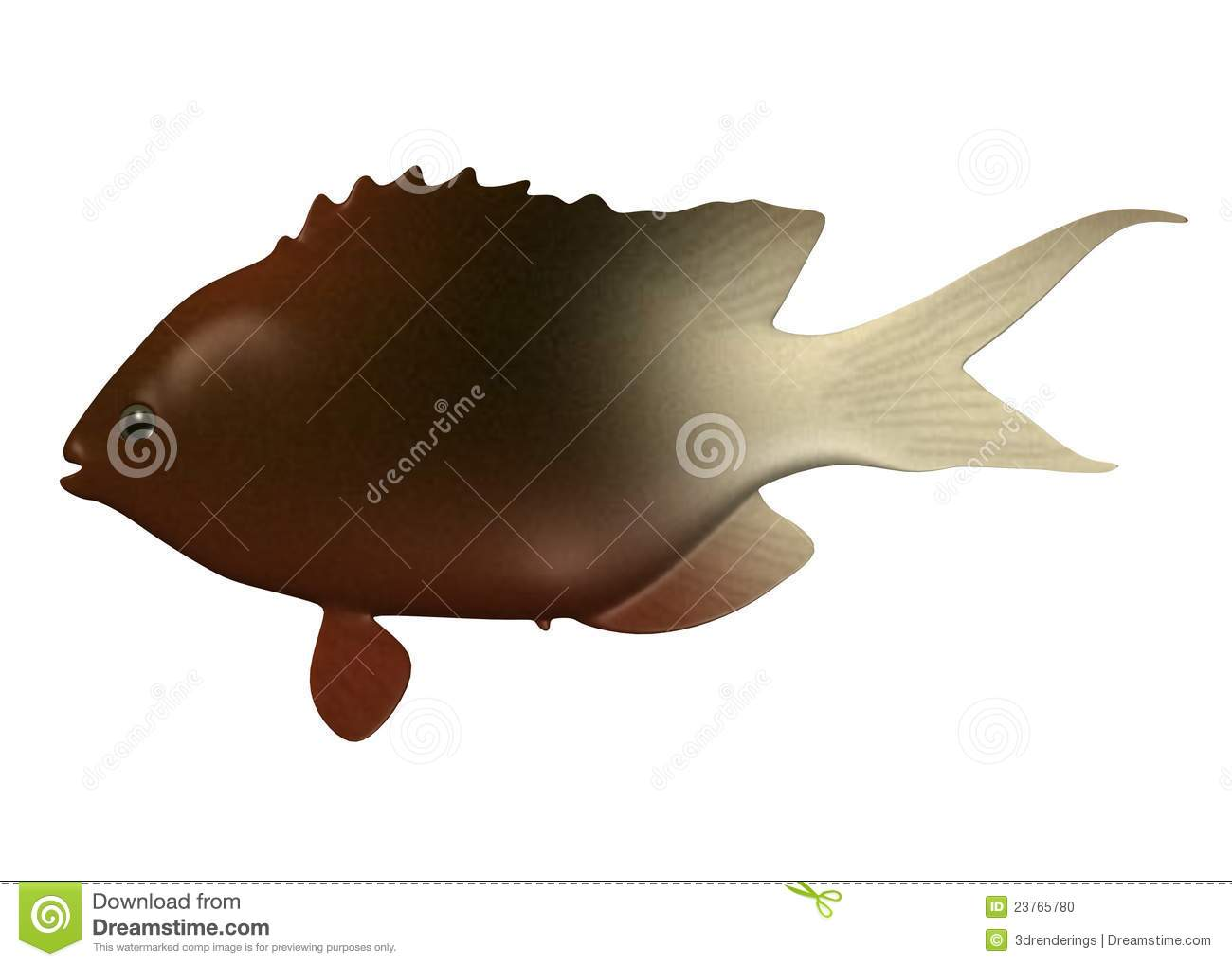 tropical fish - dark and light brown color stock photo - image, Reel Combo
