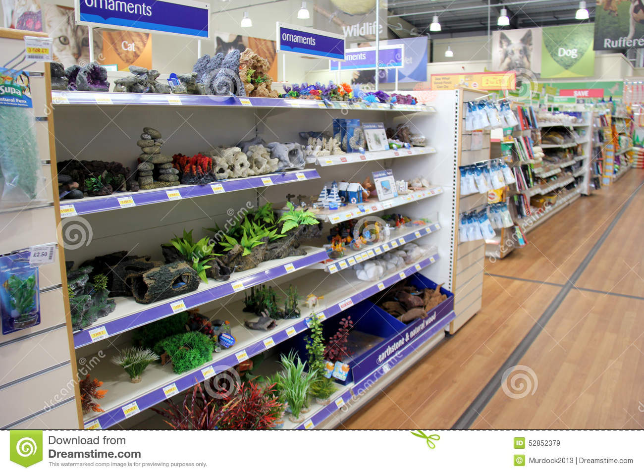 Tropical fish products editorial stock image  Image of store - 52852379
