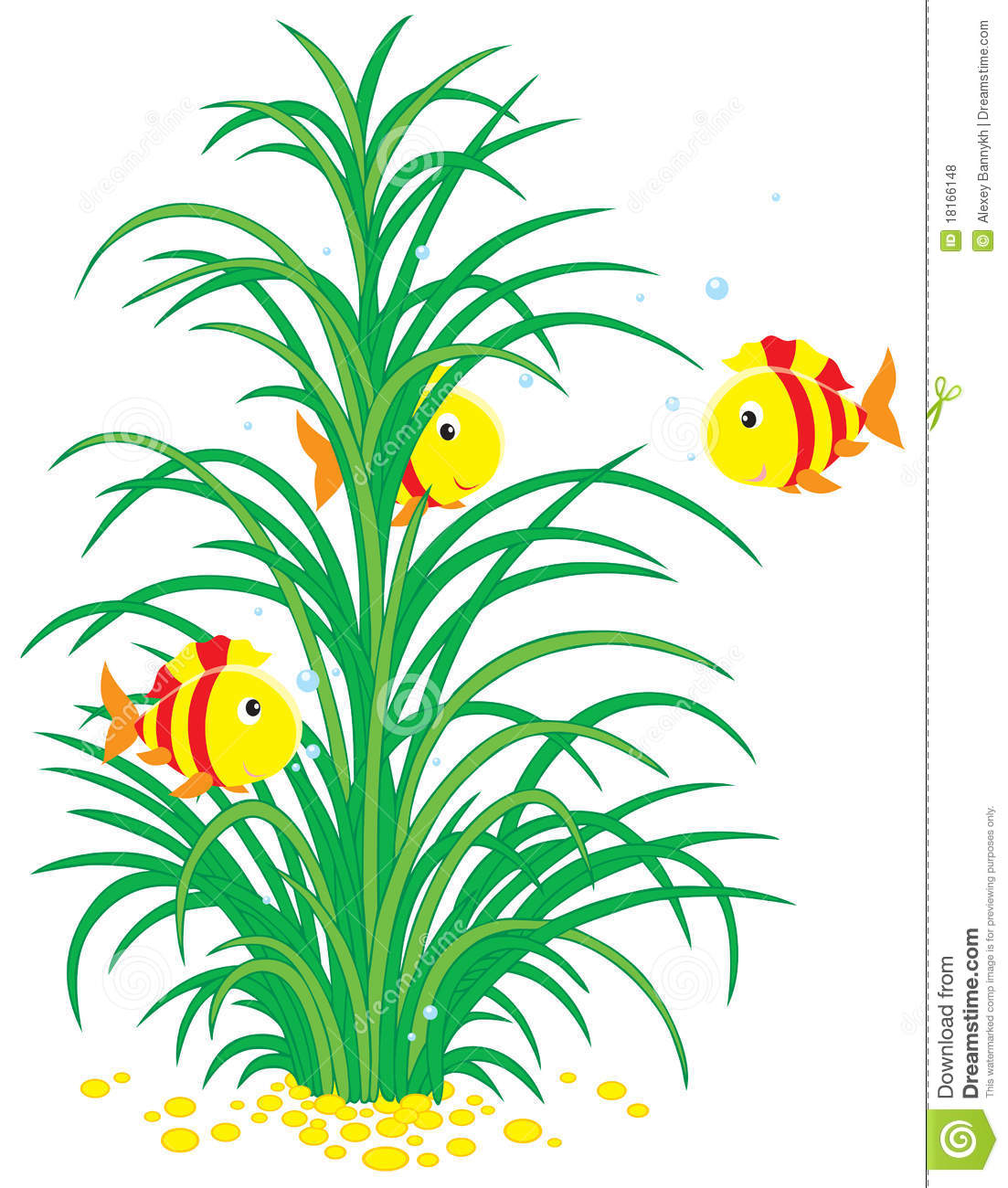 Vector clip-art of colorful striped tropical fishes swimming around ...