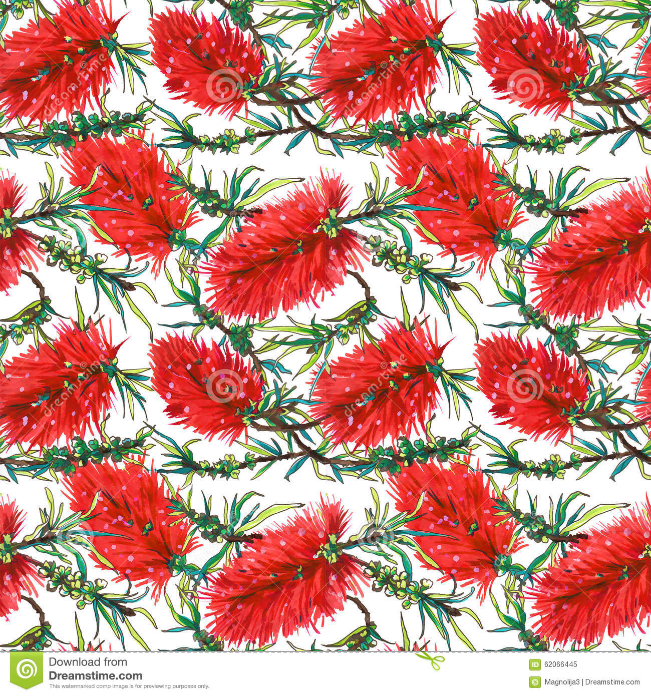 Tropical Floral Pattern With Red Exotic Flowers Callistemon Stock ...