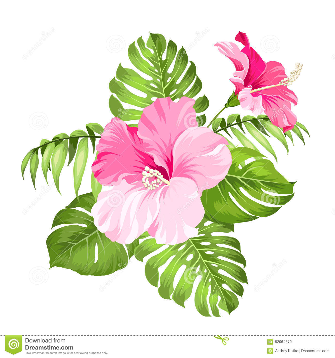Tropical Flower Garland Stock Vector  Image 62064879