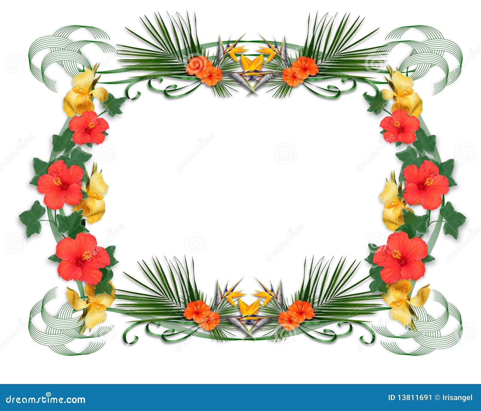 Tropical Border tropical flowers border stock image - image: 13811691