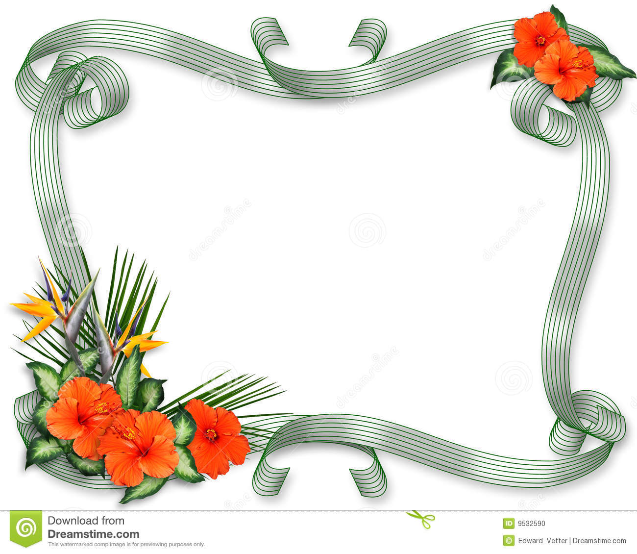 ... Tropical flowers, hibiscus, bird of paradise, ribbons with copy space