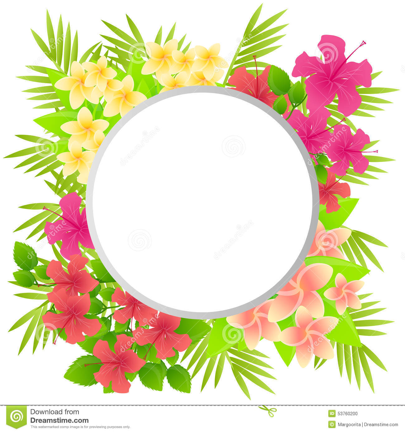 Tropical Flowers Plumeria And Hibiscus Stock Vector Illustration