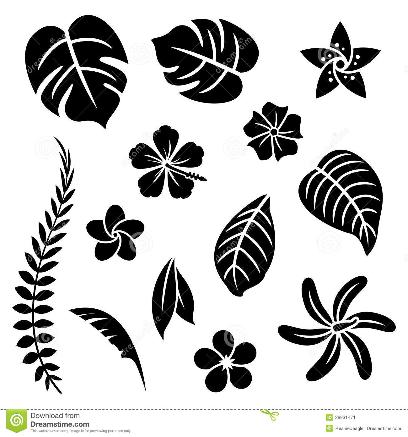 Tropical Stock Illustrations 849 814 Tropical Stock Illustrations Vectors Clipart Dreamstime Tropical leaves vector clipart and illustrations (148,617). dreamstime com