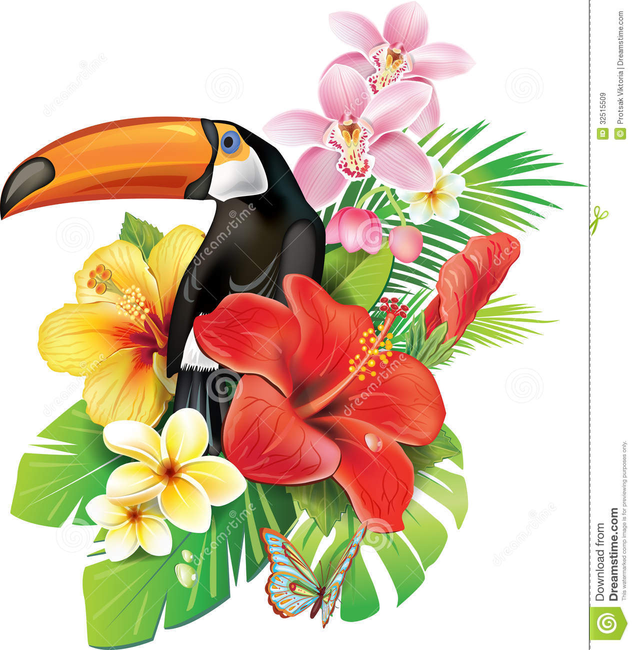 Tropical Flowers And Toucan Royalty Free Stock Images Image