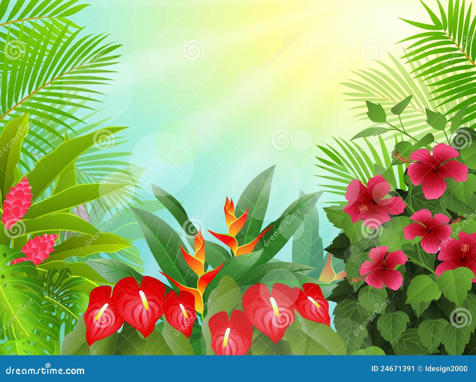 Jungle Background Clip...