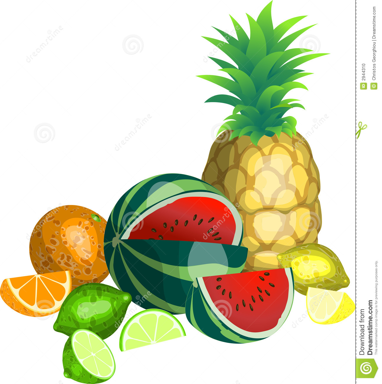 Tropical Fruit stock vector. Illustration of lime, melon ...