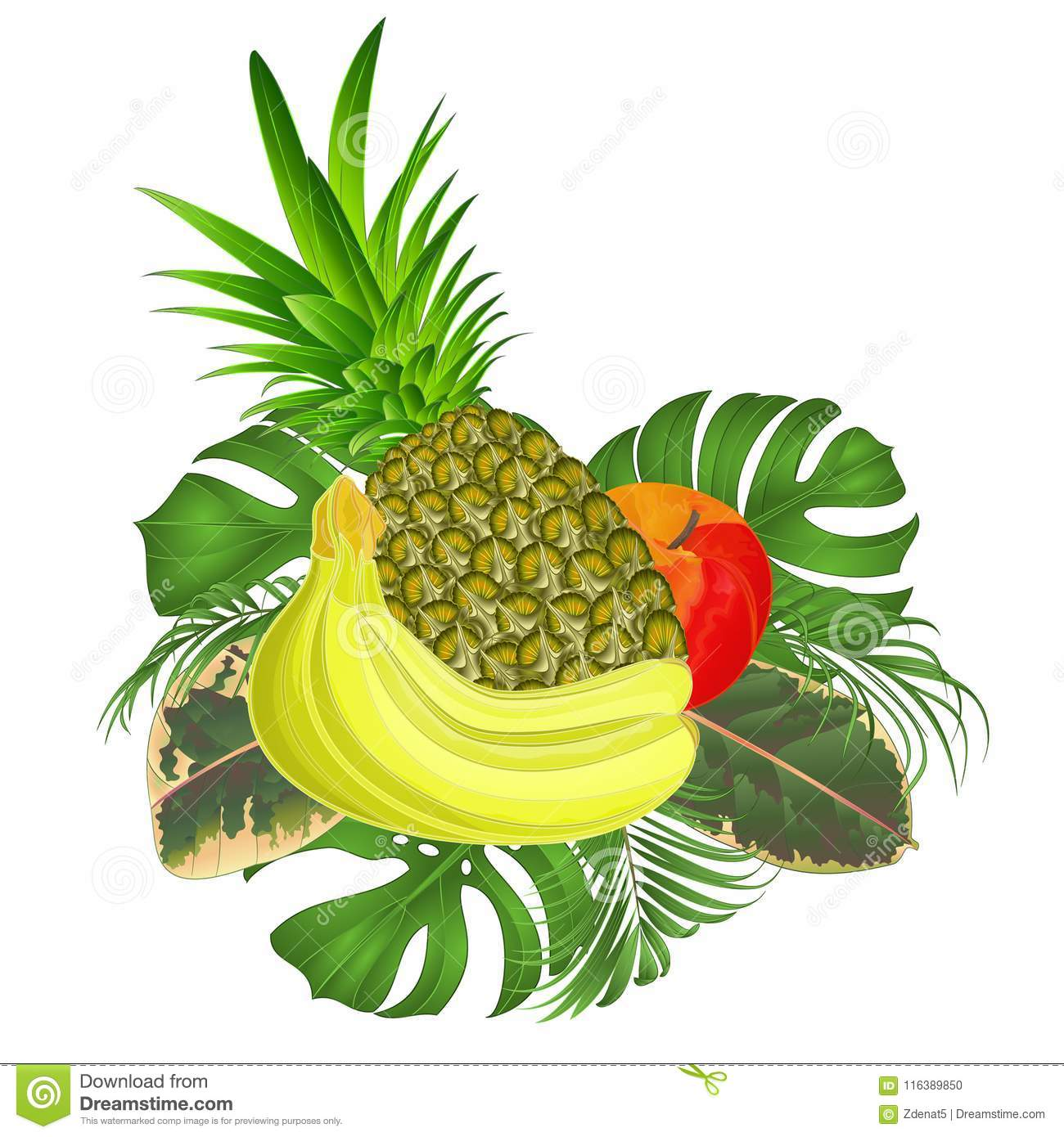 tropical fruit set with tropical leaves ficus palm philodendron on