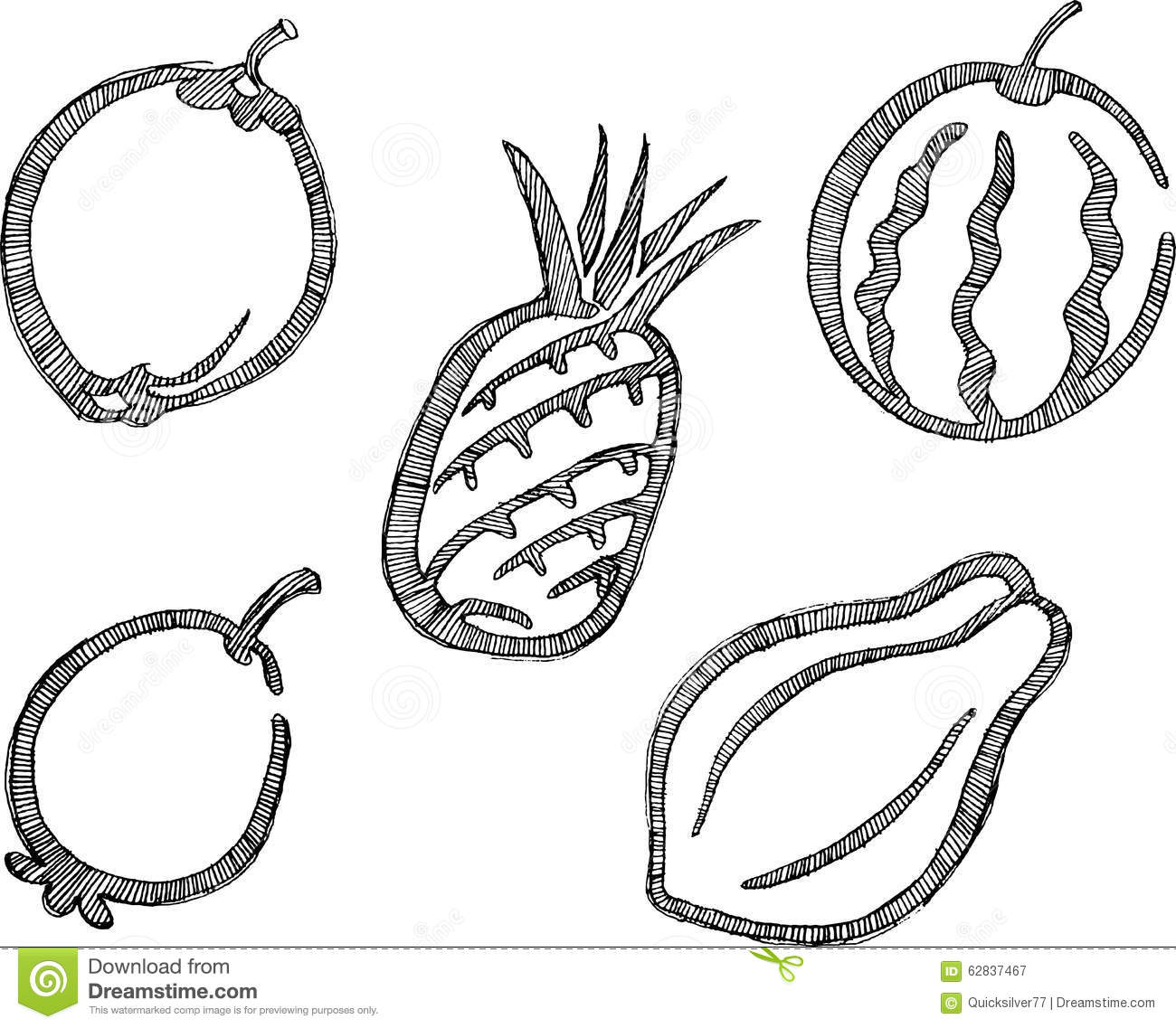 Stock Illustration Tropical Fruit Sketch Set Healthy Fruits Artwork Properly Grouped Derived My Hand Drawn Image62837467 on Eating Fruit