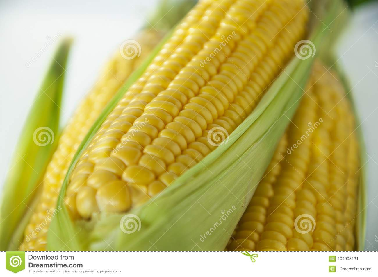 An important human staple food, maize is a highly nutritious crop, high starch as food raw materials, are miscellaneous grains,
