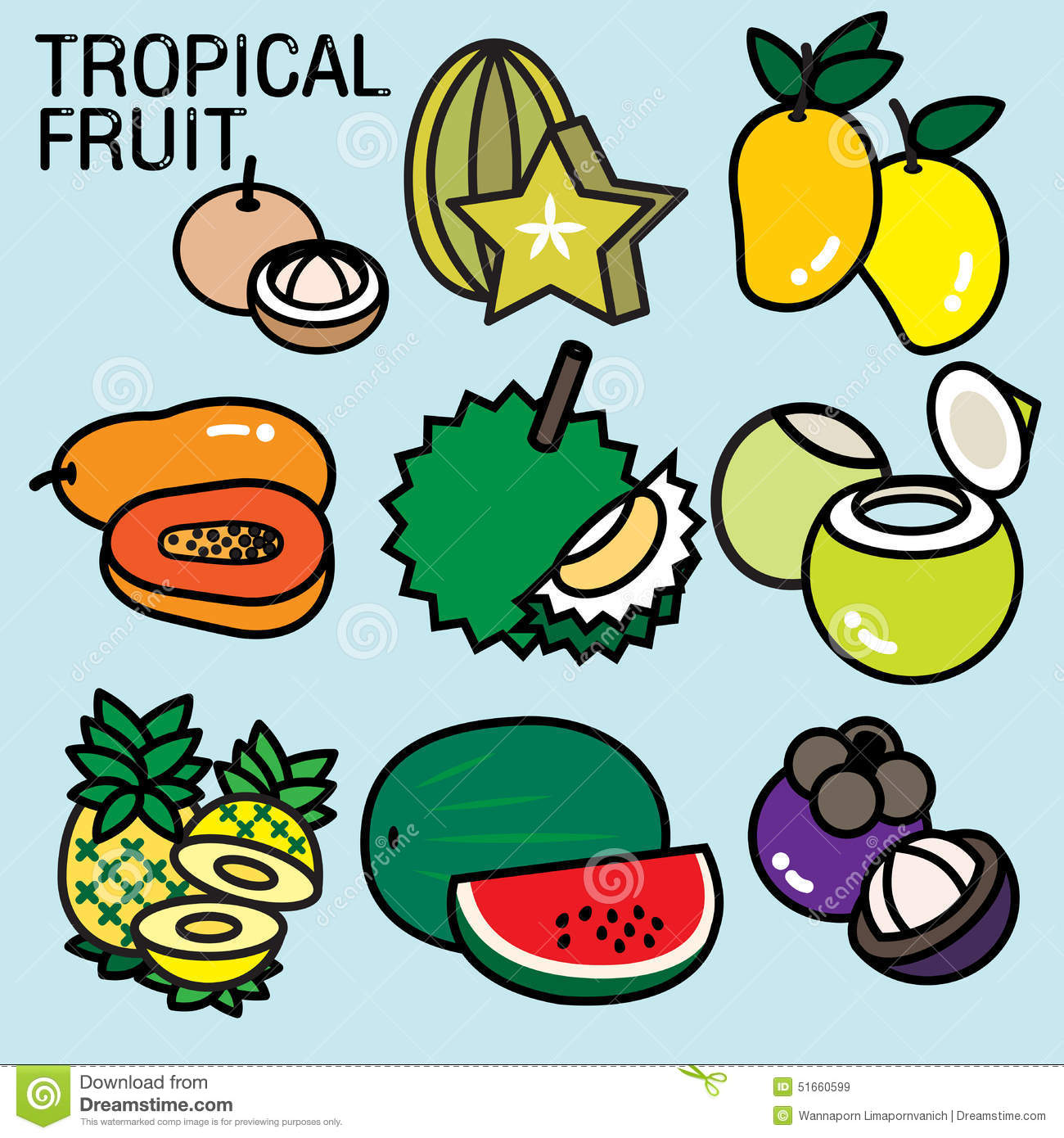 Tropical Fruits Stock Vector Illustration Of Evergreen 51660599