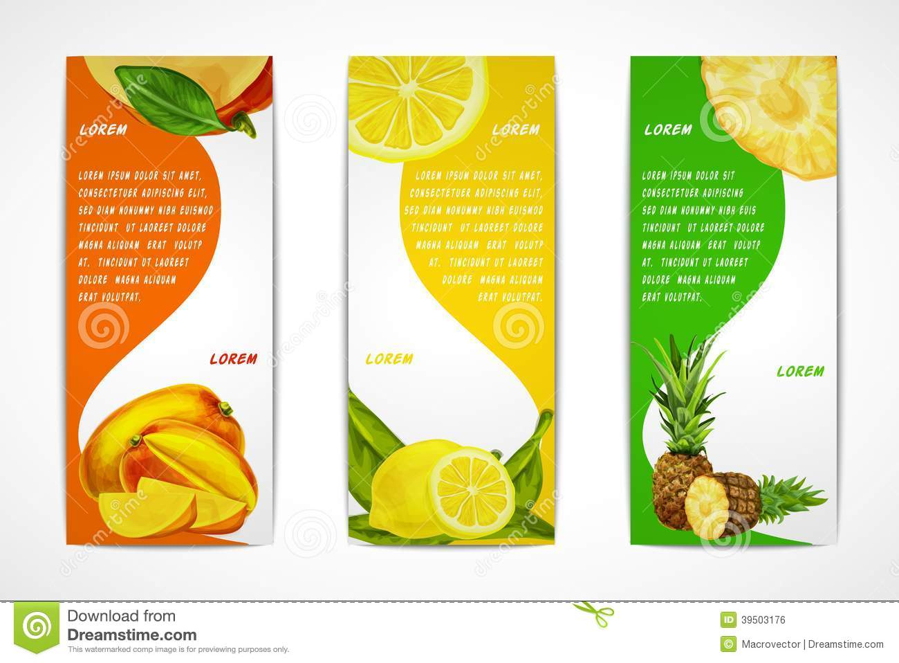 Tropical Fruits Vertical Banner Set Stock Vector Image