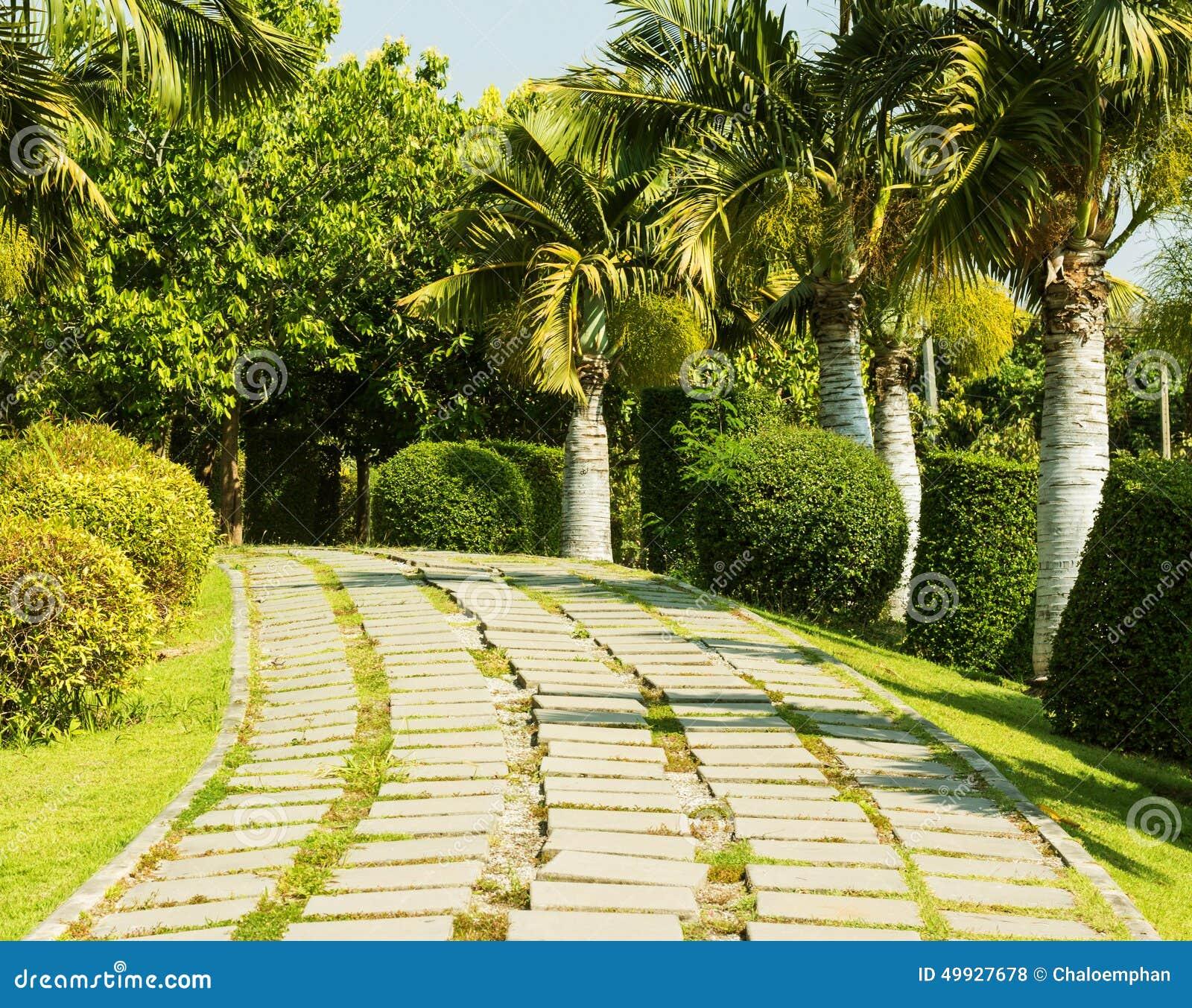 royalty free stock photo download tropical garden design