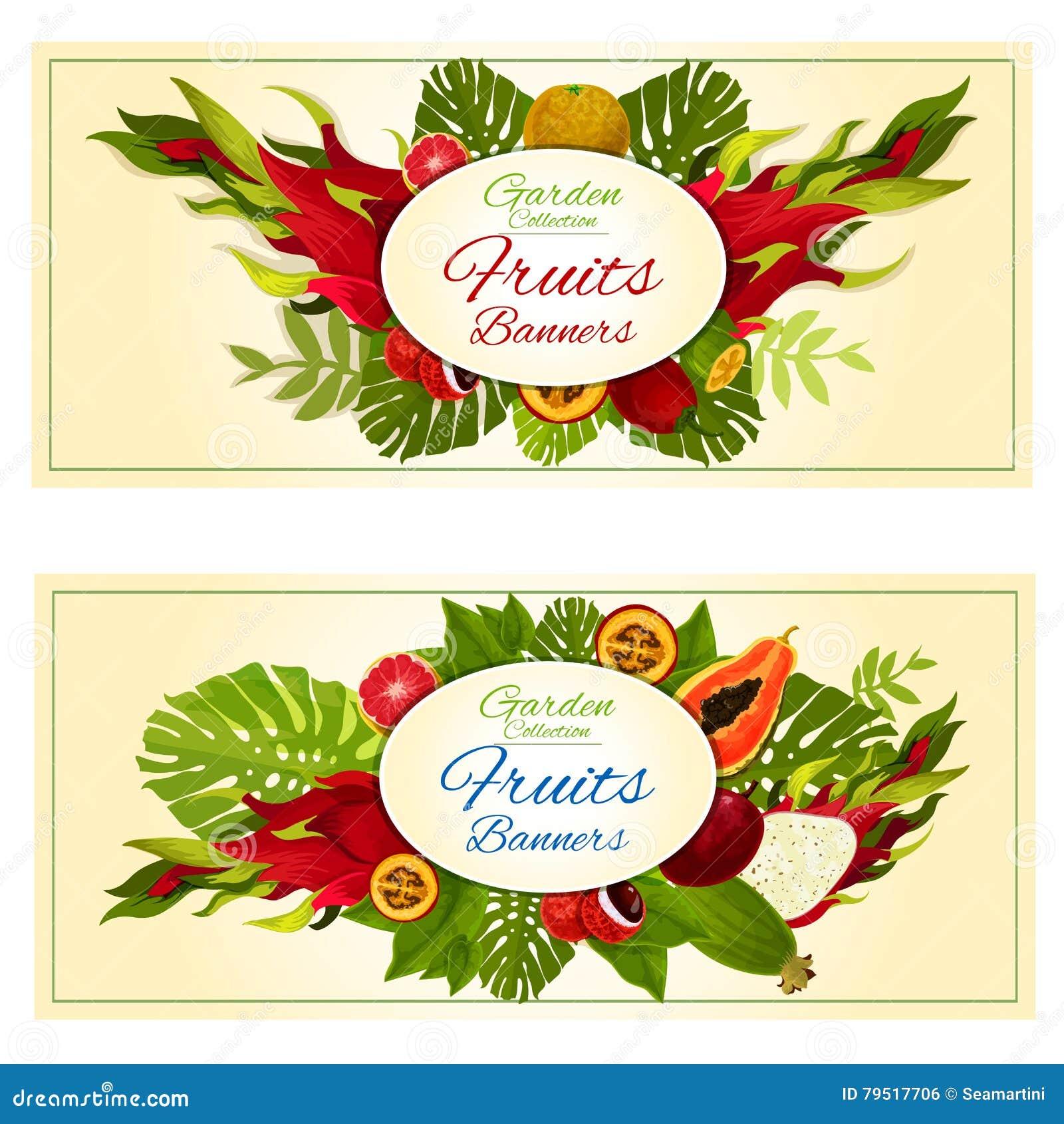 Tropical Garden Fresh Exotic Fruits Banners Stock Vector