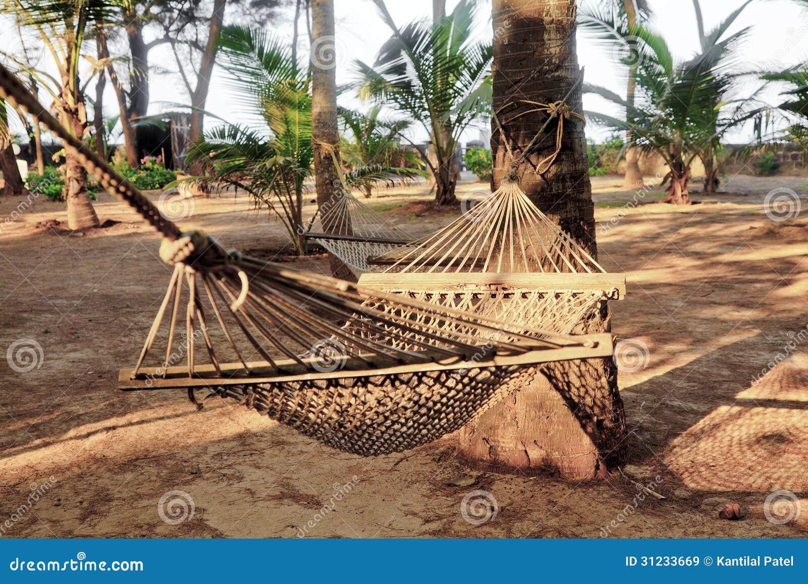 Tropical Garden Hammocks Coconut Tree Stock Photo 31233669 - Megapixl