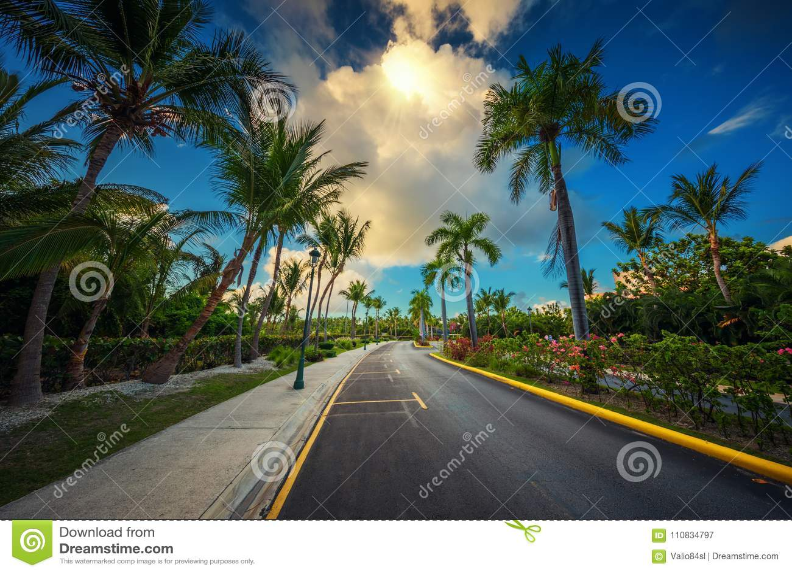 Tropical garden and pathway toward luxury resort in Punta Cana,