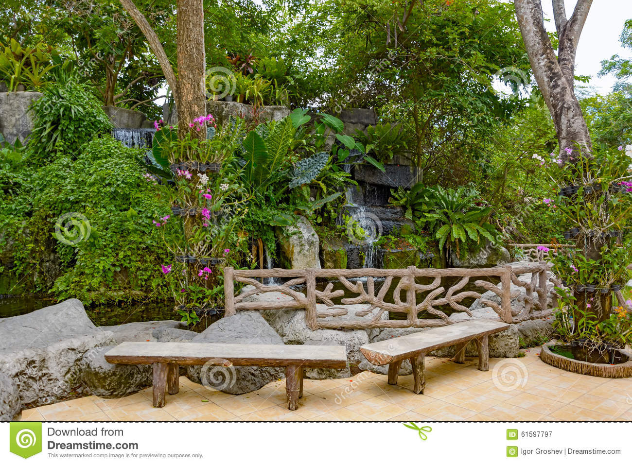 Tropical garden pond and plants stock image image 61597797 for Garden pond unlimited