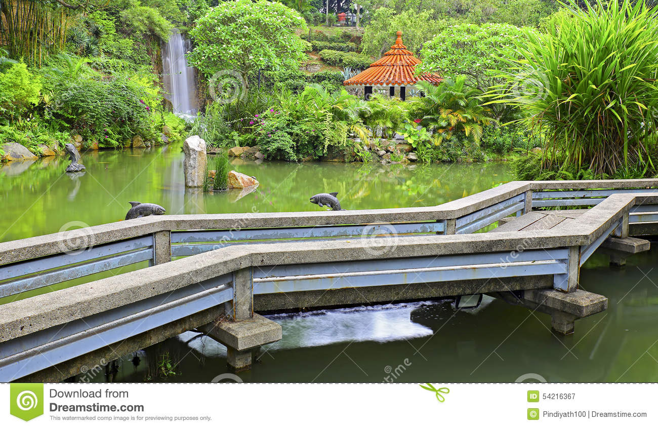 Tropical Garden With Pond And Waterfall
