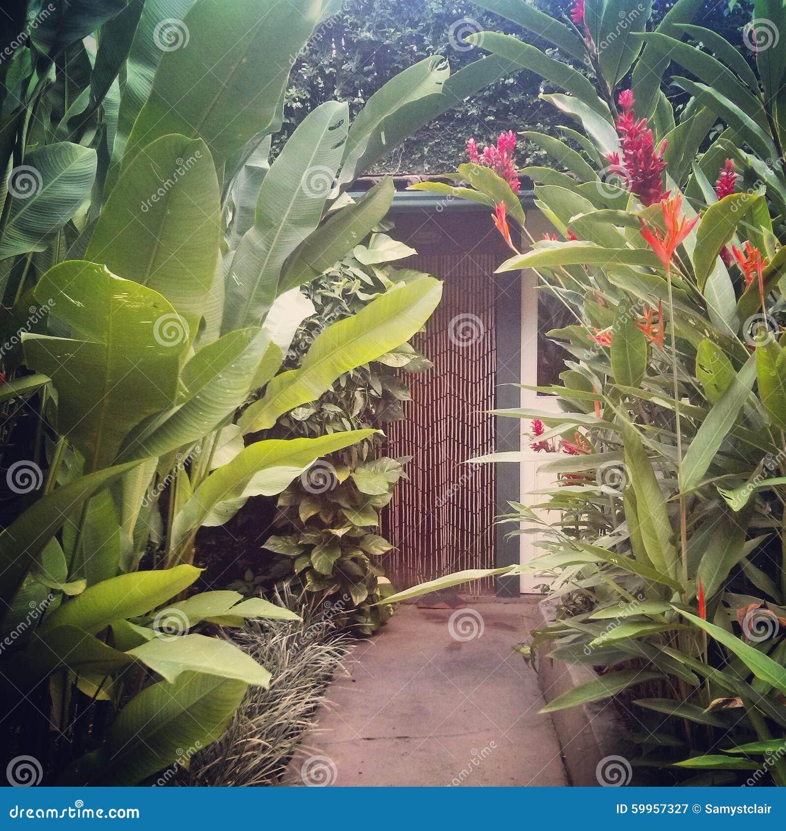 Tropical Garden Walkway And Beaded Curtain Entrance Stock Photo ...