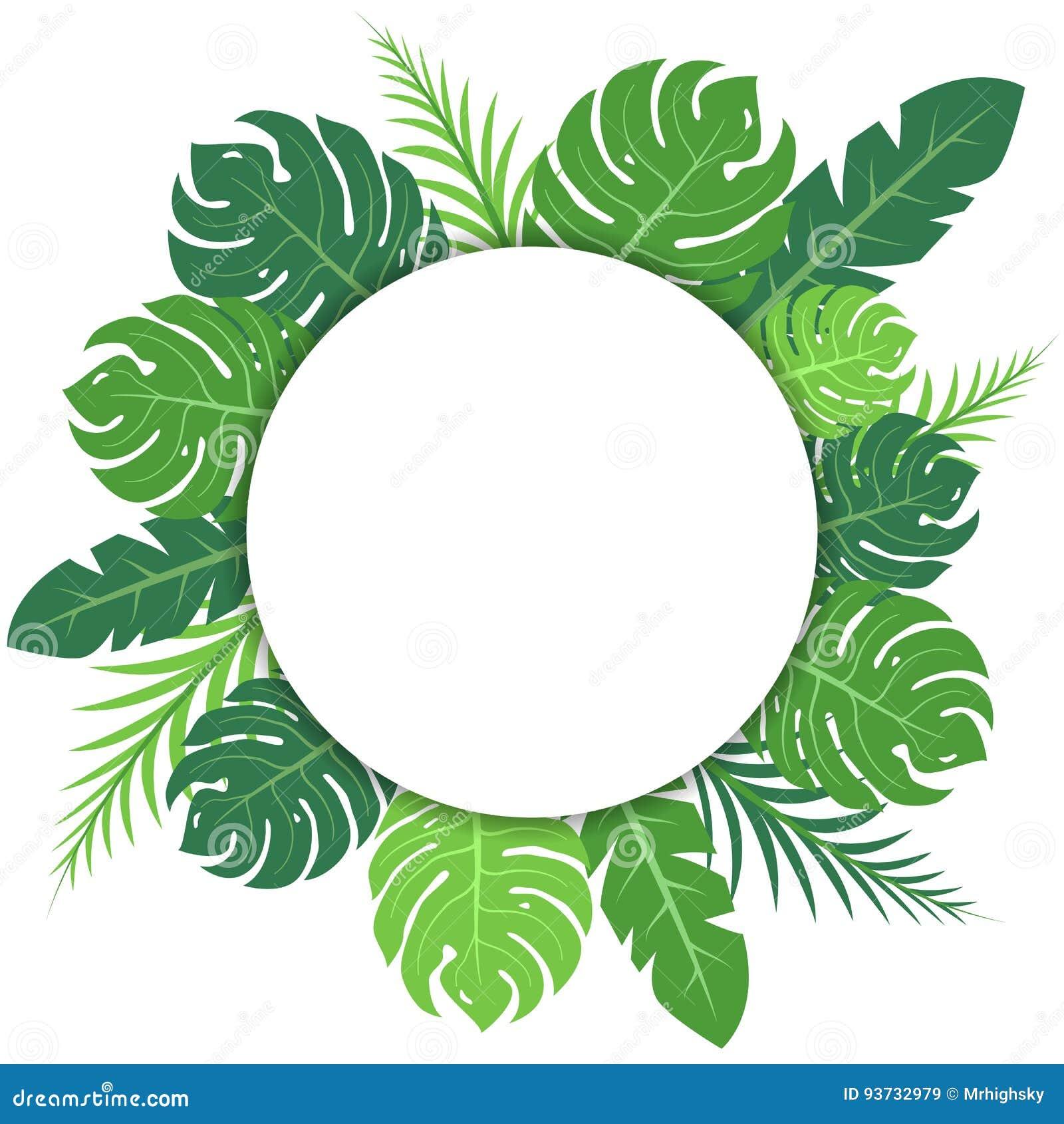 tropical green leaves blank circular banner stock vector