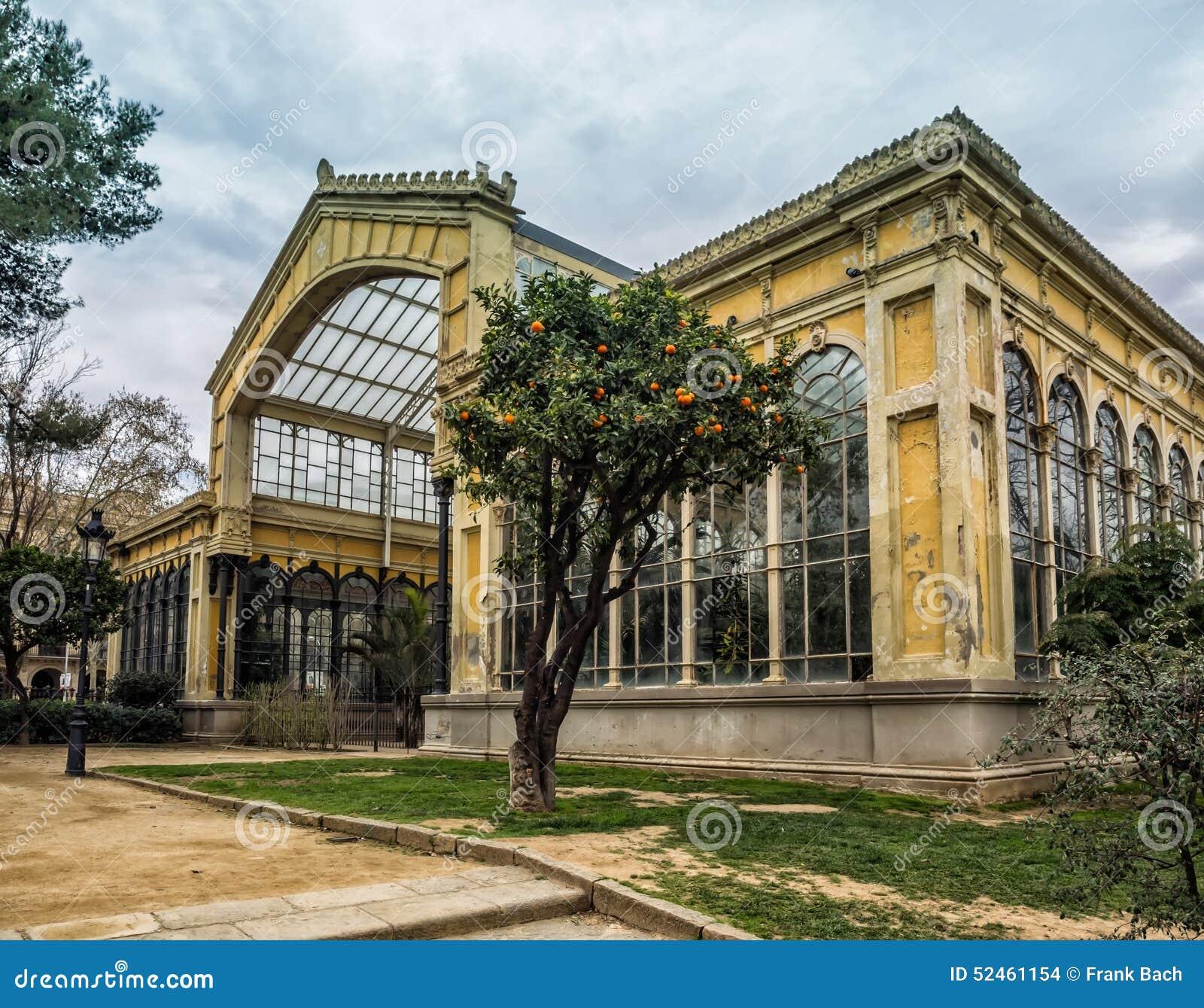 Tropical plants in garden. barcelona stock photo   image: 56662232