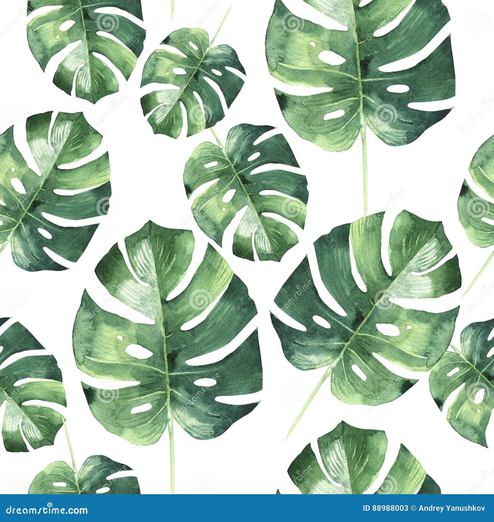 Tropical Hawaii Leaves Palm Tree Pattern In A Watercolor ...  Hawaiian Palm Tree Drawings