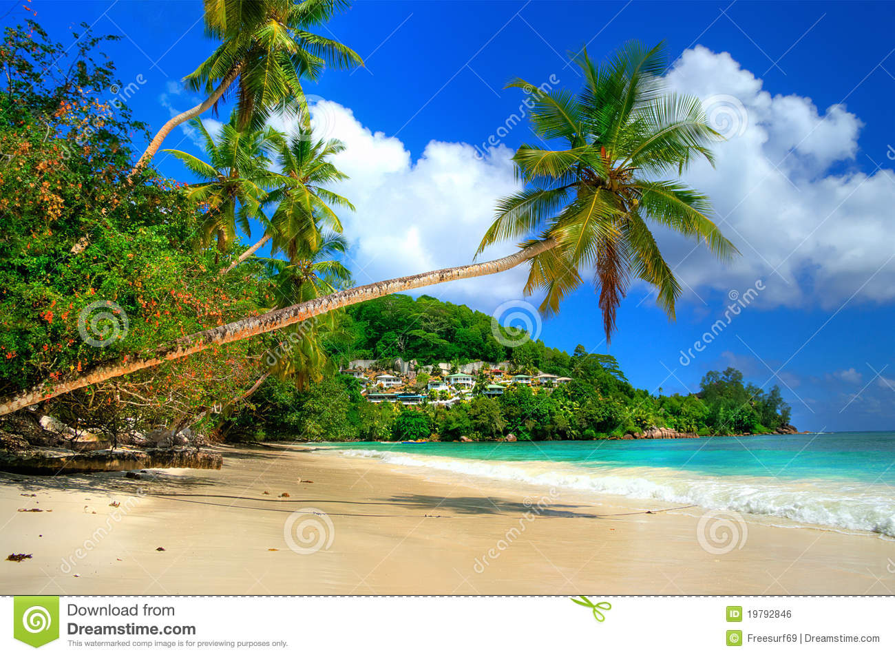 Tropical holidays stock photo Image of lagoon coast
