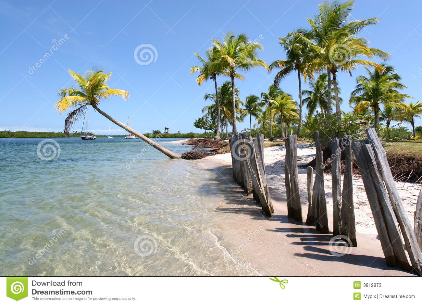 Tropical Island Beach Houses