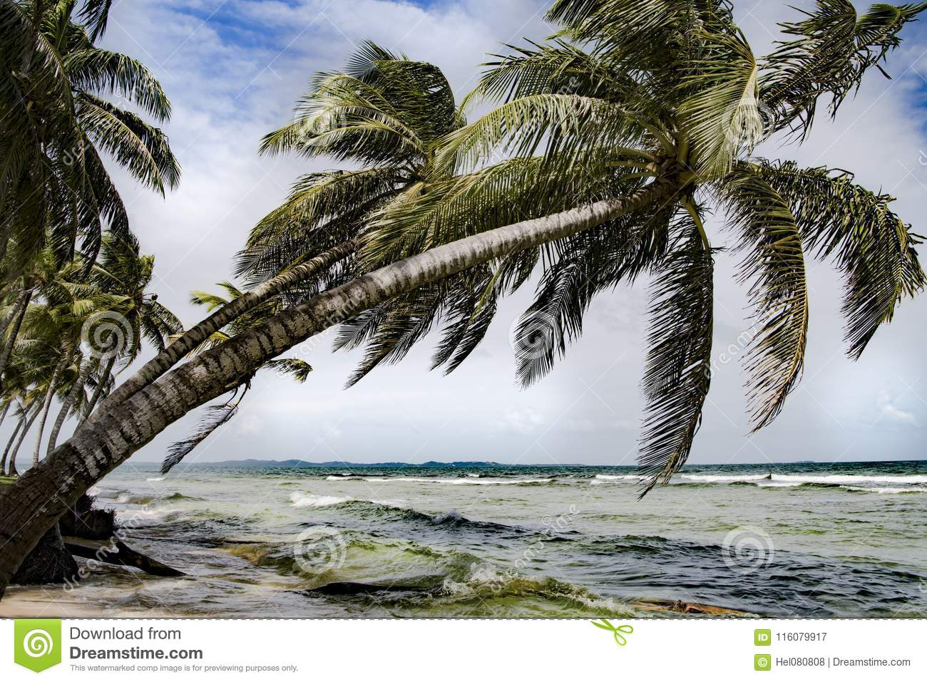 Tropical island with bowed palms, stormy weather, Caribbean sea, Panama