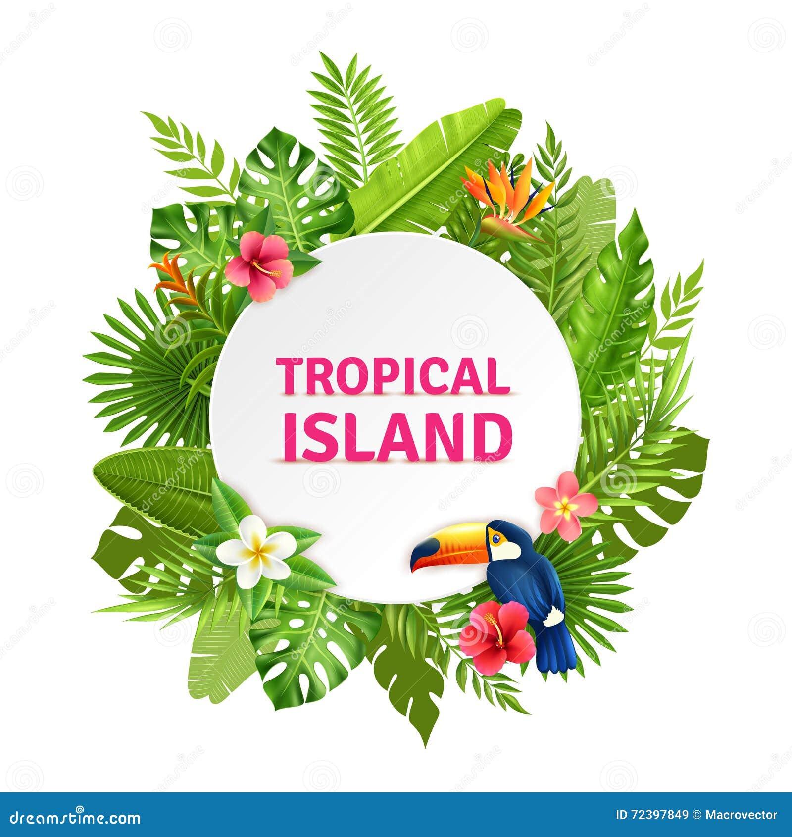 Tropical Island Flora And Toucan Frame Stock Vector