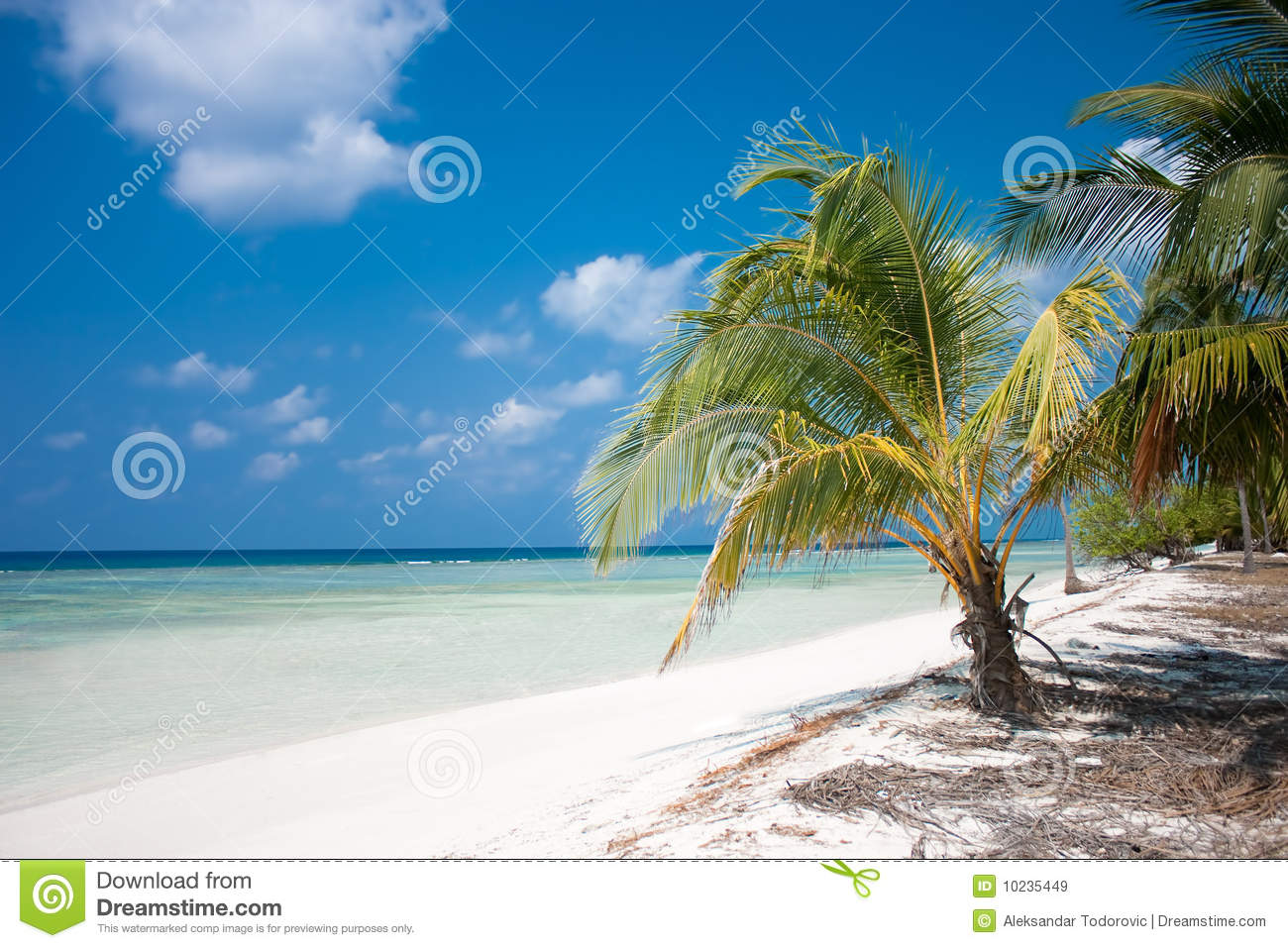 Tropical Island Paradise: Isolated Paradise Beach With Calm Clear Waters Royalty