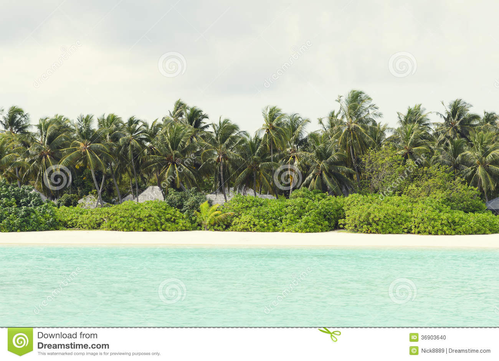 ocean landscapes beach paradise - photo #26