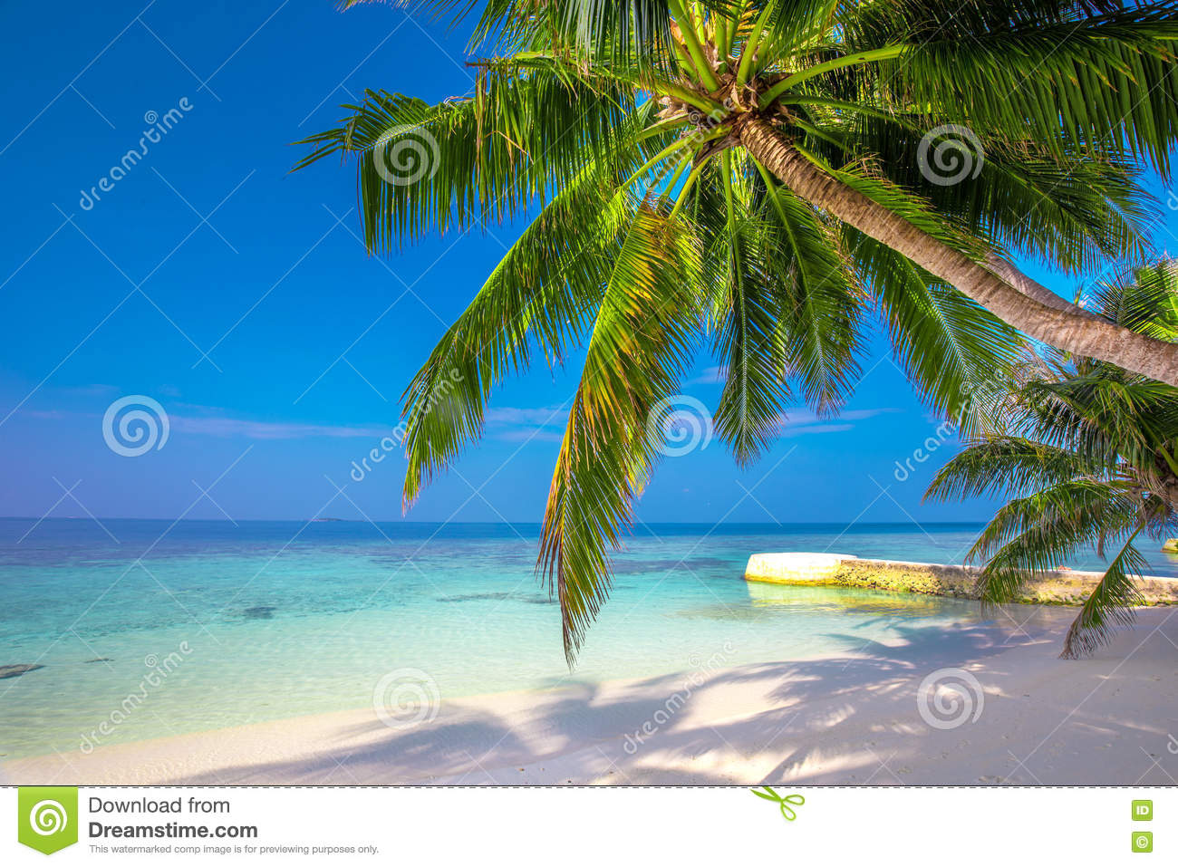 tropical island with sandy beach palm trees and tourquise clear water stock photo image 73038813. Black Bedroom Furniture Sets. Home Design Ideas