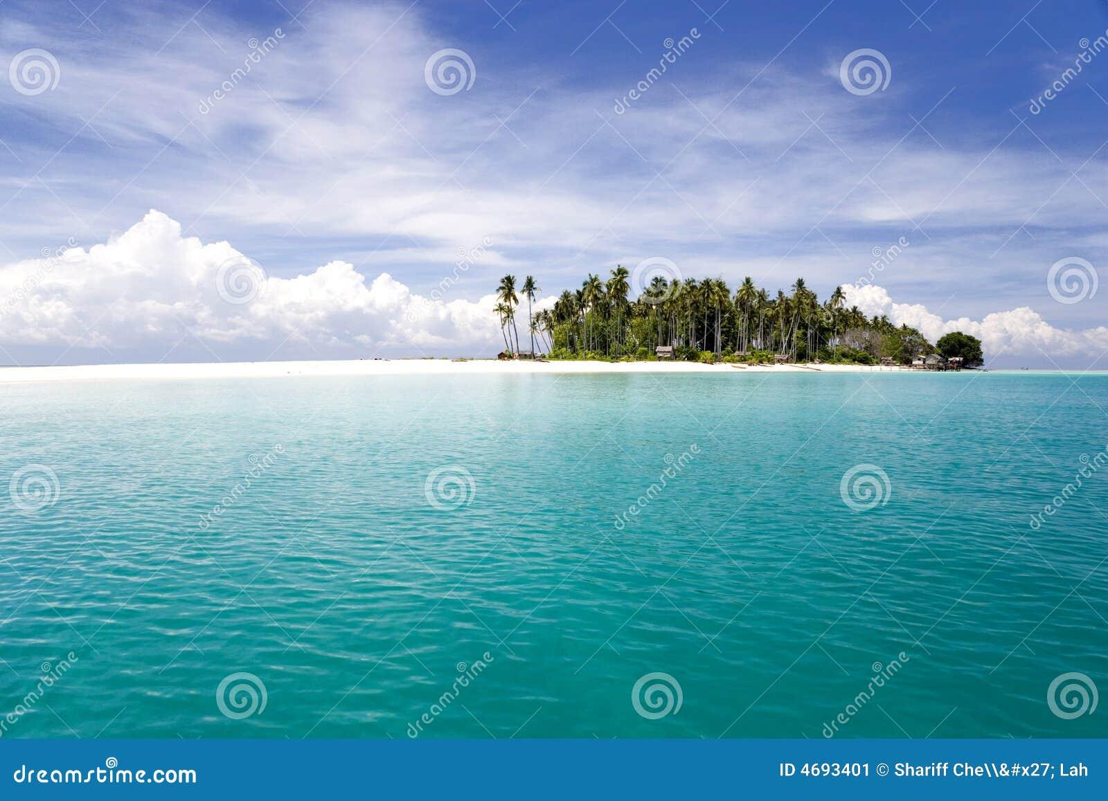 Tropical Island and Sea