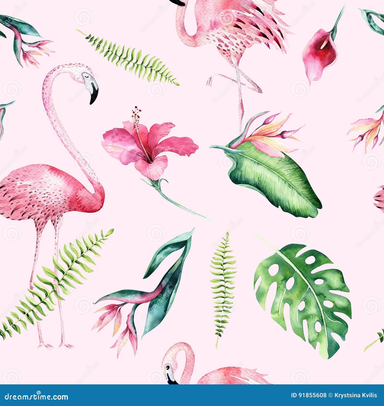Flamingo drawing tutorial cartoon vector 68310949 - Dessin de rose ...