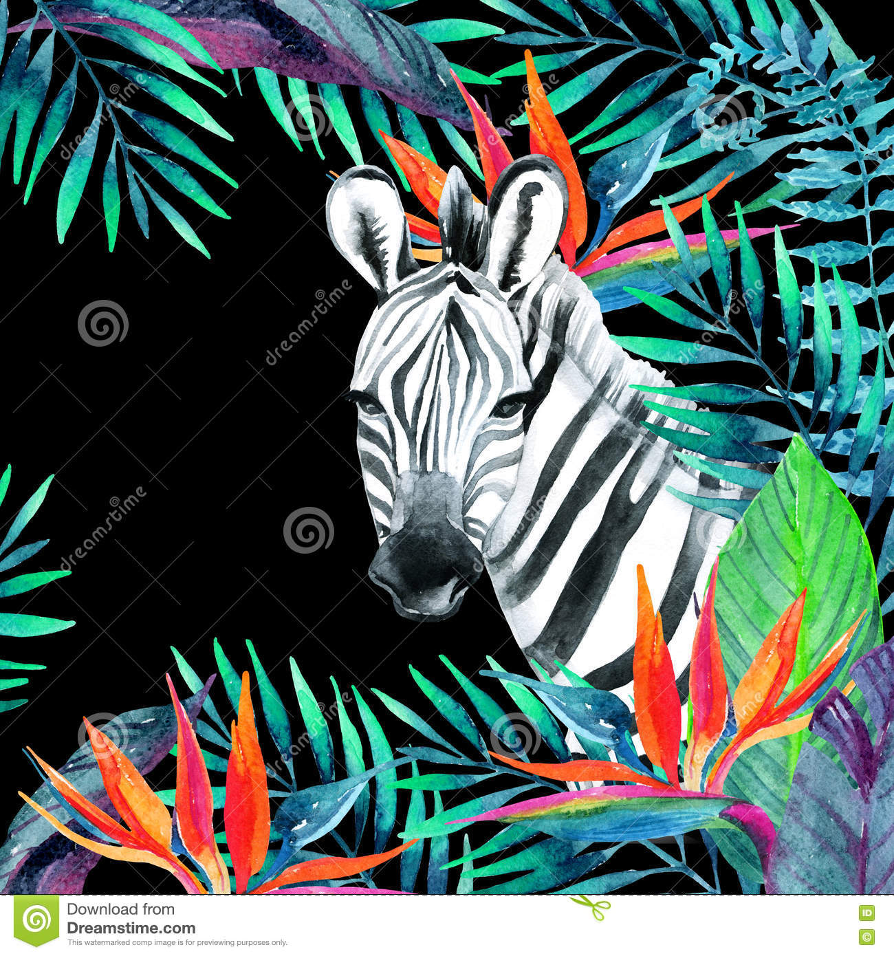 tropical jungle card floral design with zebra on white