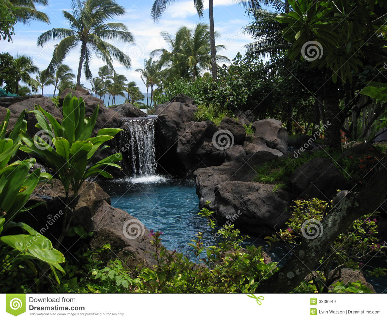 Tropical Lagoon And Waterfall Stock Image Image 3336949