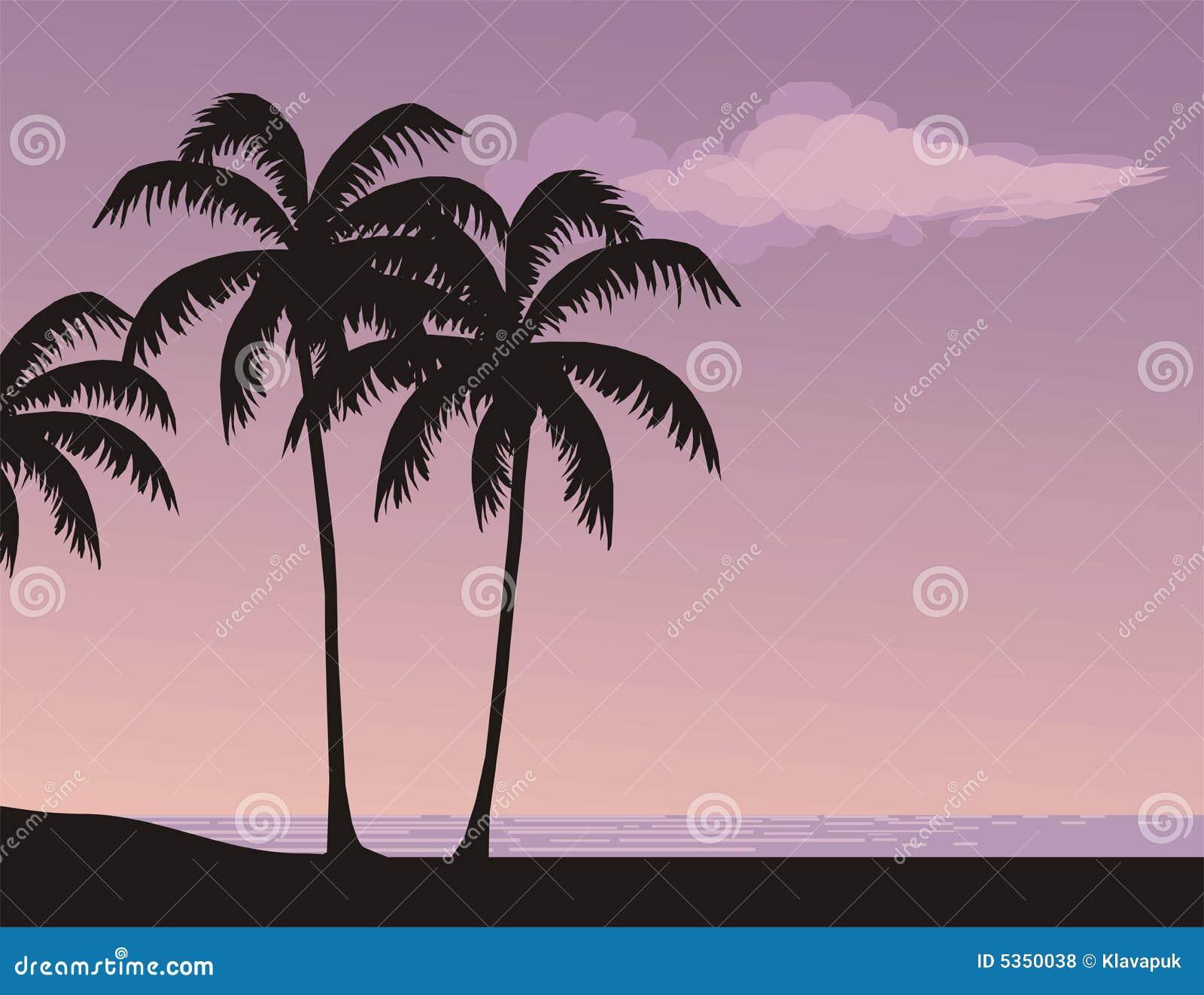 vector scenery tropical - photo #49